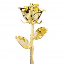 Classic 24k Gold Dipped Rose