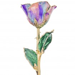 Opal 24k Gold Dipped Rose