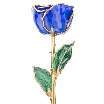 Sapphire 24k Gold Dipped Rose